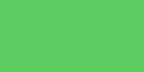 CALCOLOR 60 GREEN Rouleau (1.22 x 7.62)